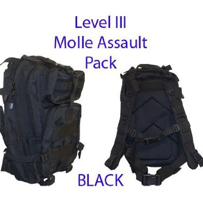 Level Iii LV3 Molle Assault Pack Backpack