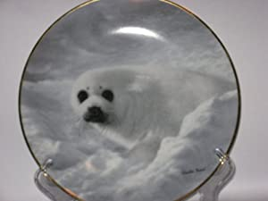 Harp Seal Plate By Charles Frace Fourth Issue in the Natures Lovables Series