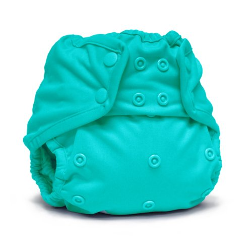 Rumparooz Snap Cloth Diaper