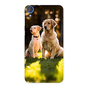 Luxirious Do Kutte Back Case Cover for HTC Desire 820s