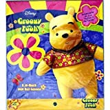 Disney Groovy Pooh A 16-Month 2010 Wall Calendar with Sound Clip Size 13 X 11.5
