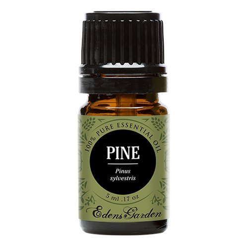 Pine 100% Pure Therapeutic Grade Essential Oil by Edens Garden- 5 ml