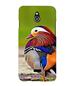 EPICCASE Cute bird Mobile Back Case Cover For Infocus M2 (Designer Case)