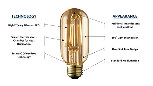 ARCHIPELAGO Dimmable LED Filament Vintage Radio T14 (RD14) Light Bulb, 2 Watt, Medium Standard Base (E26), 2200K (Amber Glow), Omnidirection, UL Listed 2