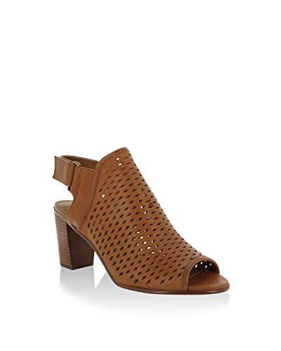 Steve Madden Zapatos abotinados