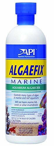api-algaefixmarine-controls-algae-marine-reef-aquariums-fish-care-16oz-bottle