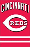 MLB Cincinnati Reds Applique Banner Flag