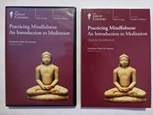 Practicing Mindfulness: An Introduction to Meditation (The Great Courses, Number 1933)