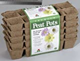 Plantation FS110 Square Peat Pots, 10 Cells, 5 Pack