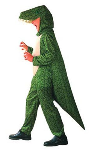 [Dinosaur kids Fancy Dress Costume Age 4-6 by Fancy Dress] (Fantastic 4 Costume Uk)