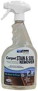 Shaw® R2X® Carpet & Rug Stian & Soil Remover - 32oz Spray Bottle
