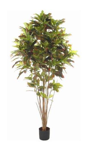 Flora Novara 99750 Artificial 5 Ft Croton Multistem Tree