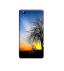 Ebby Premium Back Cover For Micromax Canvas Selfie 2 Q340