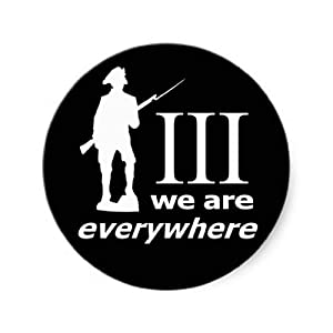 3 Percent, We Are Everywhere Stickers