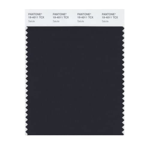 Amazon.com: Pantone 19-4011 TCX Smart Color Swatch Card, Salute