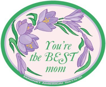 Happy Mother's Day Oval Magnet