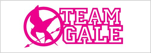 Hunger Games Team Gale Mocking Jay Sticker Decal. Pink