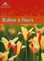 Guide des bulbes à fleurs