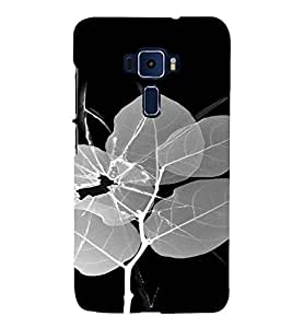 PrintVisa Broken Glass Leaf Design 3D Hard Polycarbonate Designer Back Case Cover for ASUS ZENFONE 3 ZE552KL