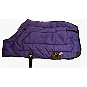 600D Close Front Medium Weight Winter Horse Blanket Purple