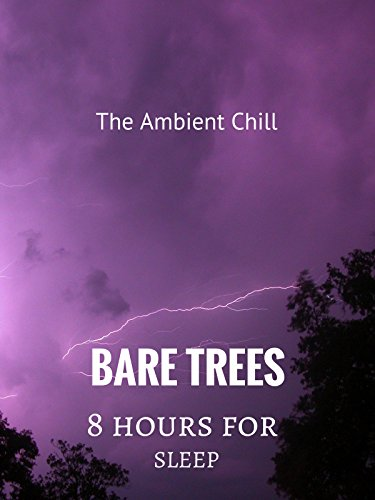 Bare Trees: 8 Hours For Sleep