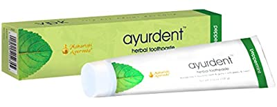 Ayurdent Herbal Toothpaste, 3.53 oz.
