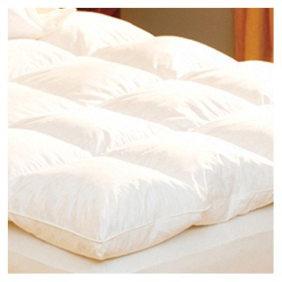 Best Prices! Luxe Loft 100% Cotton Feather Bed Size: Twin