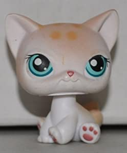 Shorthair Cat #224 (Sitting, White, Blue Eyes, Tan Spots) Littlest Pet
