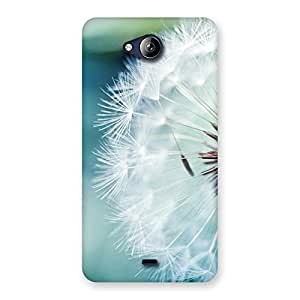 Special White Floral Back Case Cover for Canvas Play Q355