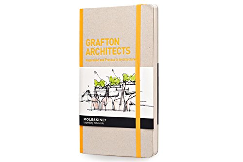 grafton-architects-inspiration-and-process-in-architecture-ipa