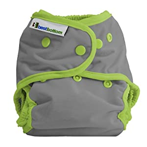 Best Bottom Cloth Diaper Shell-Snap, Dragonfly Ripple