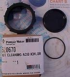 Pentair 520670 IntelliChlor Acid Washing Kit