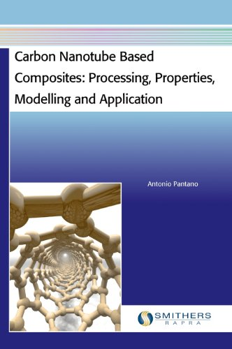 Carbon Nanotube Based Composites: Processing, Properties, Modelling and Application
