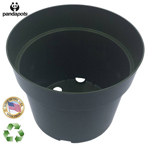 50 Plant Pots - 4 Inch - 100% Recycled Plastic - Made in USA - Strong, Reusable - Panda Pots™ (Green) (Square Garden Pots compare prices)