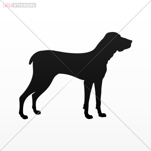 Window Guards For Dogs front-673802