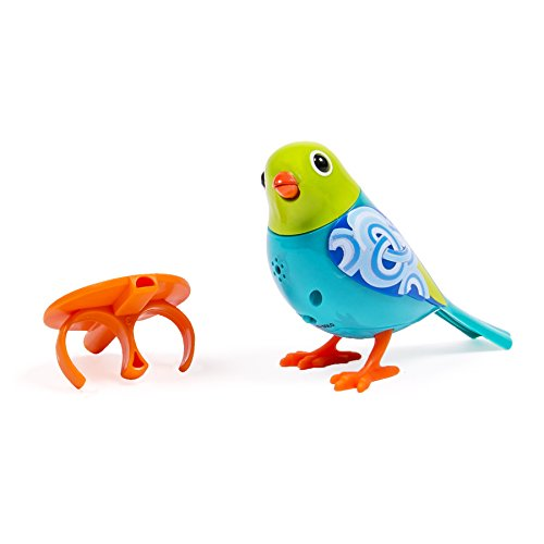 DigiBirds - Single Pack - Turquoise - 1