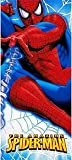The Amazing Spiderman 54in x 102in Plastic Tablecover