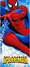 The Amazing Spiderman 54in x 102in Pl…