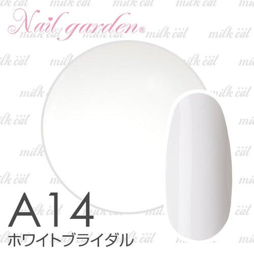 ホワイトブライダル 4g ジェルネイル LED対応 スターターキットと一緒買いがオススメ