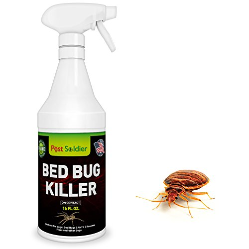 Natural Organic Formula Bed Bug Killer