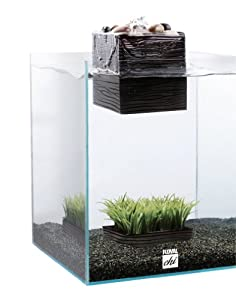 Fluval Chi Aquarium Kit, 5-Gallon