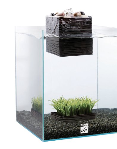Aquarium Kit, 5-Gallon