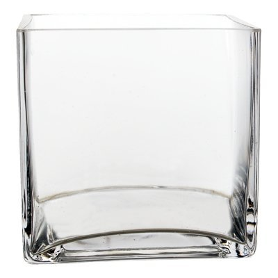 "6"" Cube Vase - Glass (6 pcs)"