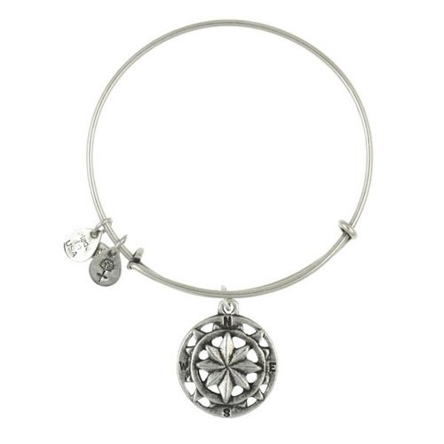 Alex and Ani Bangle Bar Compass Charm Expandable