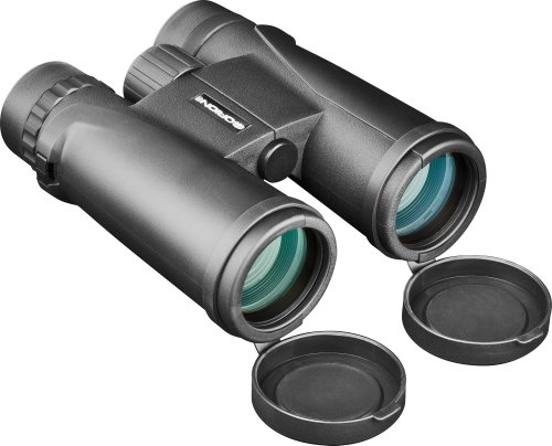 Orion 51647 Shoreview Pro 8X42 Waterproof Roof Prism Binoculars (Black)