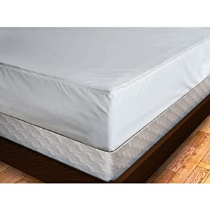 Premium Bed Bug Proof Mattress Cover, Twin