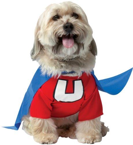 Pet C (Underdog Costume)