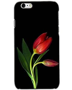 Iphone 6/6s Back Cover Designer Hard Case Printed Cover