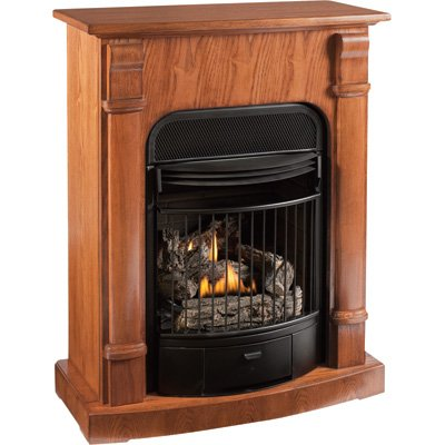 Ventless Natural Gas Fireplace Inserts Amazon