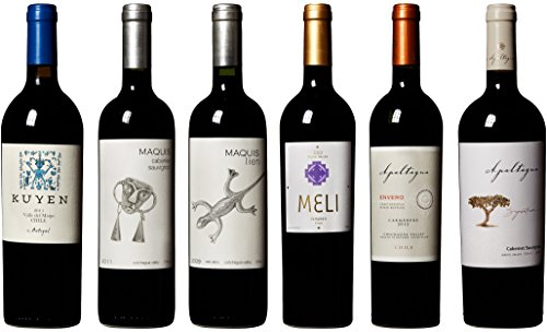 90+ Points Wines From South America Mixed Pack 6 X 750 Ml